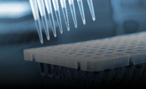Teste RT-qPCR para diagnóstico do novo Coronavírus